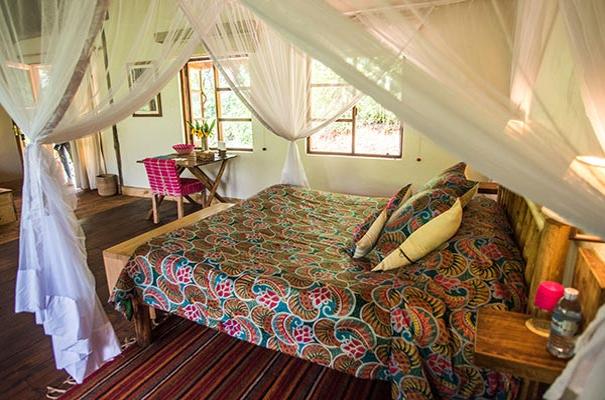 Volcanoes Safari Lodge Bwindi