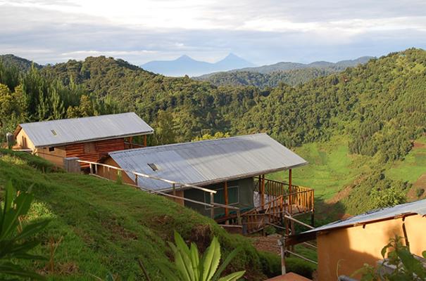 Bakiga Lodge Bwindi