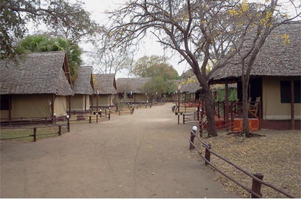 Mbuyu Selous Safari Camp