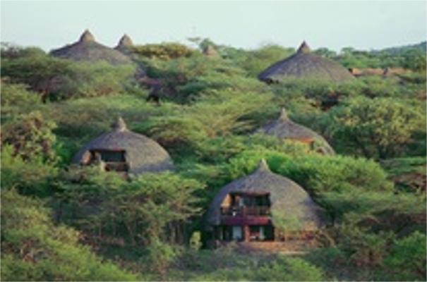 Serena Serengeti