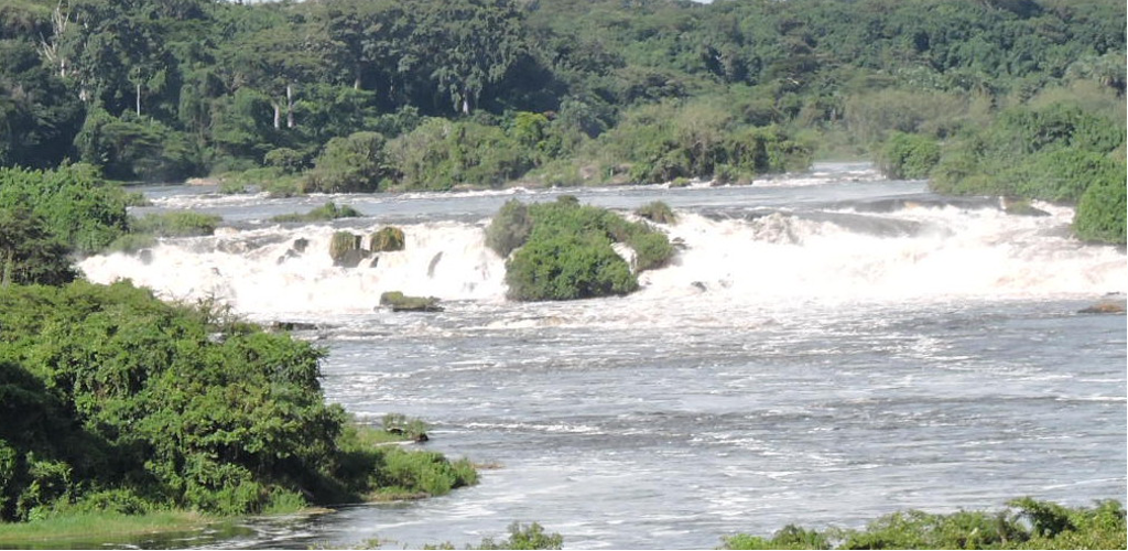 Murchison Falls and Gorillas by air